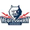 Мстя! Нефтехимик - Динамо 4:6