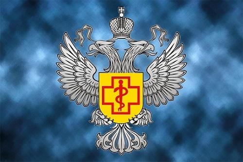 Динамо москва новостной канал футбольный клуб курсовая бизнес план ночного клуба